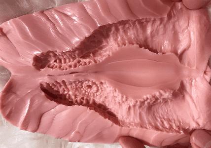 GYNOID Vagina Modell 15-2