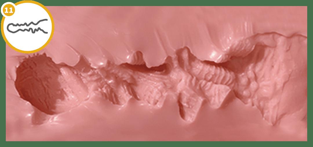 GYNOID Doll Vaginamodell 11